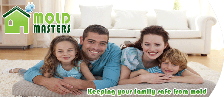 Mold Masters Inc - Mold Removal Professionals